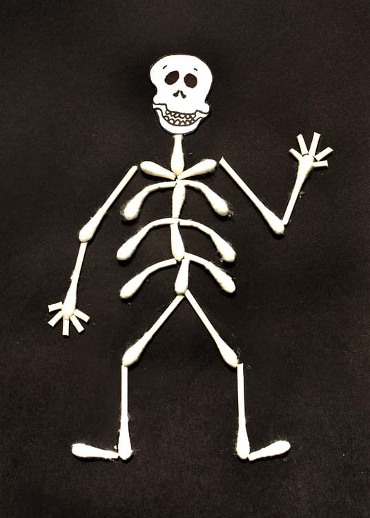 how to make a 3d skeleton for a school project