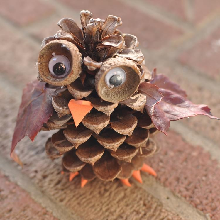 Pine cone owl for Pine cone art projects