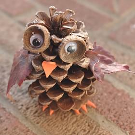 Pine Cone Craft Ideas For Kids Part - 46: Pine Cone Owl